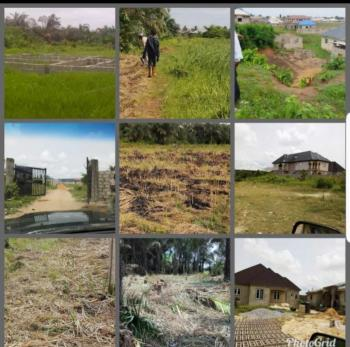 a Plot a Plot of Land with Global Suvery, Oko Agbon,  Checking Point Bus Stop, 10 Mins Drive From Agbara, Araromi Ale, Olorunda Local, Magbon, Badagry, Lagos, Residential Land for Sale