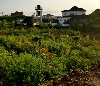 2000sqm Residential Land with C of O, Linda Chalker Street, Asokoro District, Abuja, Residential Land for Sale