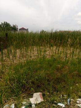 1.998 Hectares, Lekki Expressway, Lekki, Lagos, Mixed-use Land for Sale