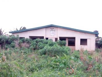 2 Unit Flats of 2 Bedroom Bungalow Bq Siting on a Full Plot of Land, Igere/ihunsa Opic Estate, Agbara, Ogun, Residential Land for Sale
