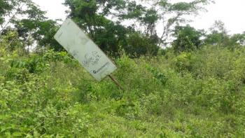 40 Acres Commercial Land, Lufuwape Village, By New Makun City, Mowe Ofada, Ogun, Commercial Land for Sale