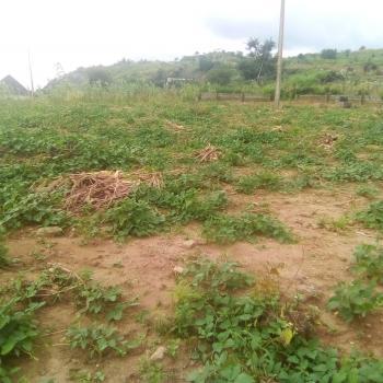 1,400 Sqm Land, Ushafa Behind British Royal Academy, Bwari, Abuja, Land for Sale