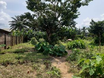 Plot of Land, Along Goodluck Jonathan Bypass, Close to Garment Factory and Airport in Calabar, Calabar, Cross River, Land for Sale