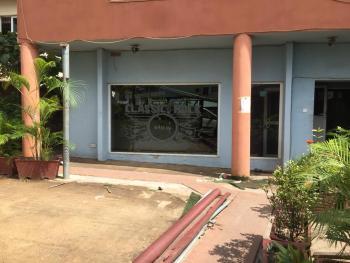 Top Notch 4 Bedroom Semi-detached Duplex, Wuse 2, Abuja, Semi-detached Duplex for Rent