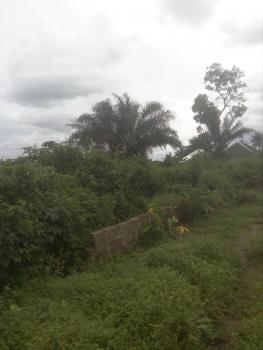 2 Plot of Land in a Developed Neighborhood, Mbodo Aluu, After Opm Head Quarter, Port Harcourt, Rivers, Mixed-use Land for Sale