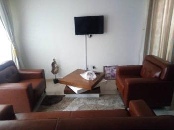 Furnished 2 Bedroom Semi-detached Duplex with 1 Room Bq, Adeniyi Jones, Ikeja, Lagos, Semi-detached Duplex for Rent