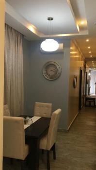 2 Nos. 2 Bedroom Flats, Adeniran Ogunsanya, Surulere, Lagos, Flat Short Let