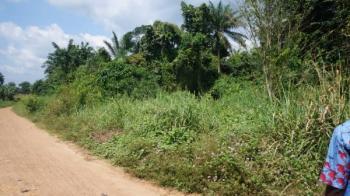 Farmlands  20,000 Acres, Orileowu, Iwo, Osun, Commercial Land for Sale