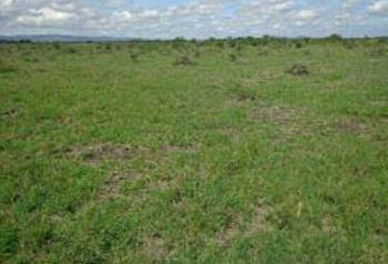 903sqm Plot of Land, Oniru, Victoria Island (vi), Lagos, Residential Land for Sale