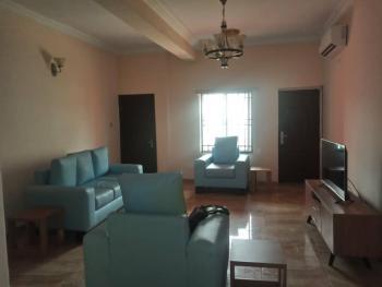 Fully Serviced and Luxury 2 Bedroom Apartment, Lekki Paradise Estate, Chevron Drive, Chevy View Estate, Lekki, Lagos, Flat Short Let