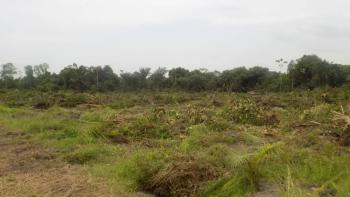 0.24 Hectares of Commercial Land (serviced), Ilasan, Lekki, Lagos, Commercial Land for Sale