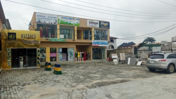 Shopping Plaza, Sangotedo, Ajah, Lagos, Plaza / Complex / Mall for Sale