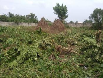 Two Plots of Fenced Land, Alatise, Ibeju Lekki, Lagos, Residential Land for Sale