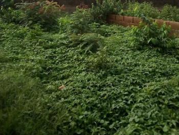 2 Plots of Land Measuring 1328.702sqm, Gberigbe, Ikorodu, Lagos, Residential Land for Sale