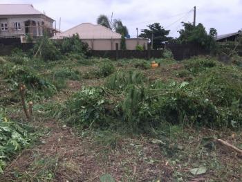 Residential Land, Muyideen Animashaun Street, Off Alahaji Bashorun Street, Ojota, Epe., Epe, Lagos, Residential Land for Sale