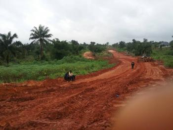 Acres of Farmland with C of O, Along The Road, Agulare Anambra State Nigeria, Anambra, Anambra, Commercial Land for Sale