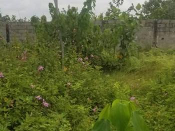 2 Plots of Land Measuring 1,200sqm, Adeniran Ogunsanya, Surulere, Lagos, Mixed-use Land for Sale
