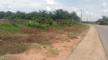 100ft By 200ft Land, Okhoromi Tarred Road, Airport Road, Benin, Oredo, Edo, Commercial Land for Sale