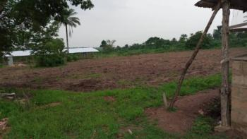 2 Acres of Land with Piggery Pen and Poultry Pen, Akinmorin Area, Oyo East, Oyo, Land for Sale