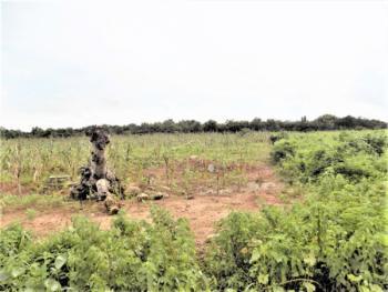 650sqm Land, Jahi, Katampe (main), Katampe, Abuja, Residential Land for Sale
