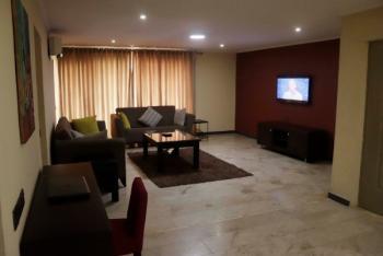 Premium 2 Bedroom Serviced Apartment with Study, Cameron Rd, Ikoyi, Lagos, Old Ikoyi, Ikoyi, Lagos, Flat Short Let
