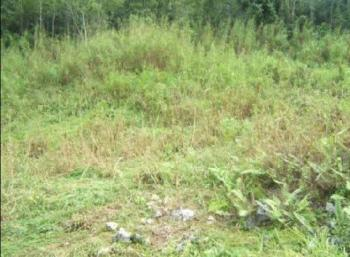 a 2147.66sqm Land for Sale Title C of O, Presidential Villa, Asokoro District, Abuja, Mixed-use Land for Sale