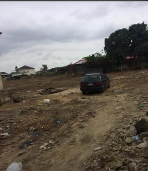 Bare Land in a Built Environment, Close to Chemist Bus Stop, Akoka, Yaba, Lagos, Mixed-use Land for Sale
