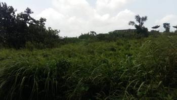 50 Acres of Land, By Dangote Refinery, Origanrigan, Lekki Free Trade Zone, Lekki, Lagos, Mixed-use Land for Sale