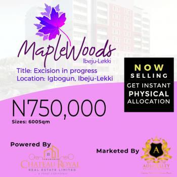 Genuine Land, Ikegun, Ibeju Lekki, Lagos, Residential Land for Sale