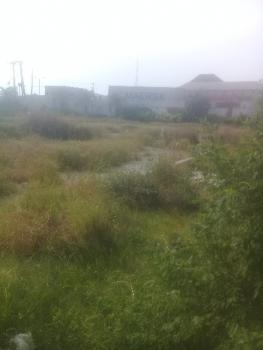 1000sqm Land, Startimes Estate, Amuwo Odofin, Isolo, Lagos, Residential Land for Sale