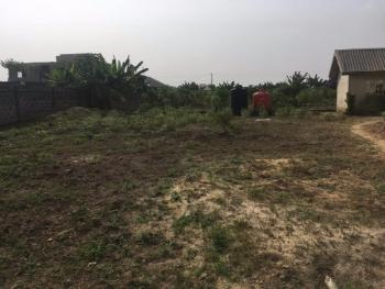 600sqm Land at a Gated Estate, Victory Estate, Amuwo Odofin, Isolo, Lagos, Residential Land for Sale