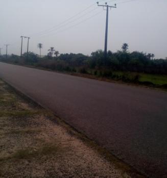 Cheapest Genuine Land, Alatise, Ibeju Lekki, Lagos, Mixed-use Land for Sale