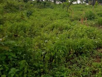 1.5 Acres of Commercial Land, Amuwo Odofin, Isolo, Lagos, Commercial Land for Sale