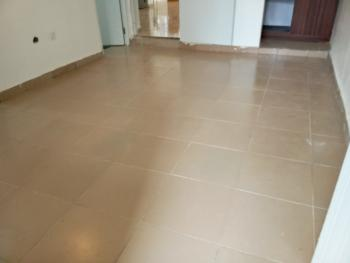 New Well Finished 1 Bedroom Flat, Wuye, Abuja, Mini Flat for Rent