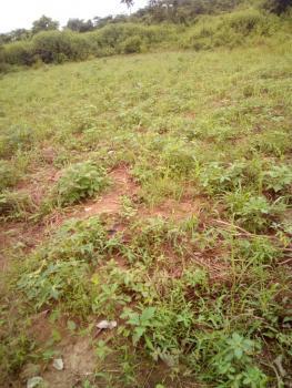 50 Acres Accessible Farm Land, Imini Village After Ijaye Off Ijaye/iseyin ., Moniya, Ibadan, Oyo, Commercial Land for Sale