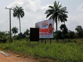 Pearl Garden Estate, Obafemi Owode, Mowe Ofada, Ogun, Mixed-use Land for Sale