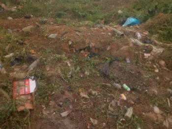 Bare Land Measuring 811.049sqm, Amuwo Odofin, Isolo, Lagos, Mixed-use Land for Sale