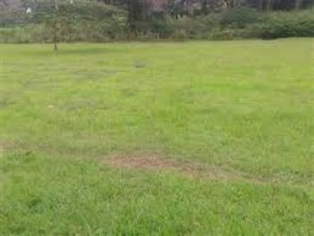 for Sale 5,000sqm Waterfront Land in Ikoyi Lagos, Old Ikoyi , Lagos, Old Ikoyi, Ikoyi, Lagos, Residential Land for Sale