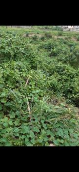 Very Affordable Landed Property, Omole Phase 2, Ikeja, Lagos, Residential Land for Sale