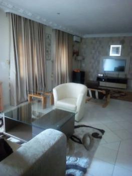 Luxury 1 Bedroom Flat, Jabi, Abuja, Flat Short Let