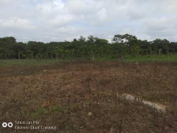 20 Hectares of Commercial Land, Close to Efab Horizon, Karsana South, Karsana, Abuja, Mixed-use Land for Sale