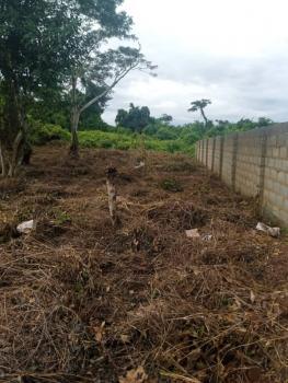 2plots of Land at Excellent Location, Alabata, Odeda, Ogun, Commercial Land for Sale
