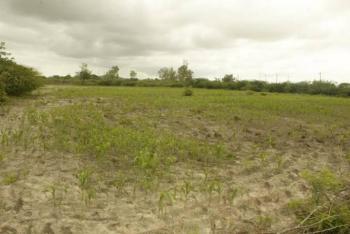 14 Plots of Land, Lagos Ibadan Expressway, Kara, Ibafo, Ogun, Land for Sale