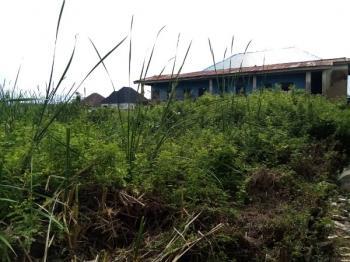 Land, Alebiosu, Satellite Town, Ojo, Lagos, Mixed-use Land for Sale