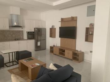 Beautiful 1 Bedroom Apartment with Nice Finishing, Banana Island, Ikoyi, Lagos, Mini Flat Short Let