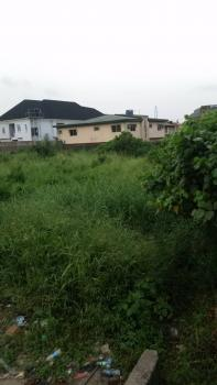 Land for Sale in a Secured Estate in Gbagada, Medina, Gbagada, Lagos, Residential Land for Sale