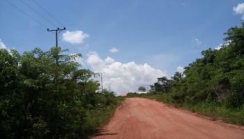 Land, Sojuolu Village, Ewekoro, Ogun, Mixed-use Land for Sale