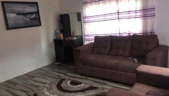 Luxury 3 Bedroom Duplex with Bq, Chevy View Estate, Lekki, Lagos, Semi-detached Duplex for Rent