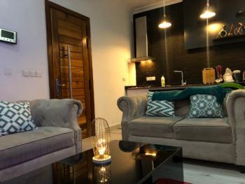 Rayburn Apartment (luxury 1 Bedroom Apartment with 24 Hours Power), Ty Danjuma Street / Off Ligali Ayorinde, Victoria Island (vi), Lagos, Flat Short Let