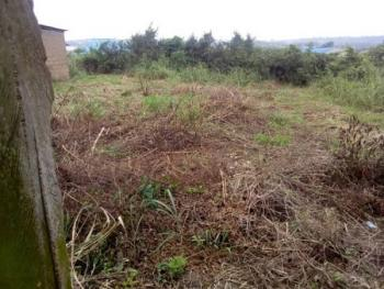 Full Plot of Land Pay and Start Work, Ago Palace, Isolo, Lagos, Residential Land for Sale